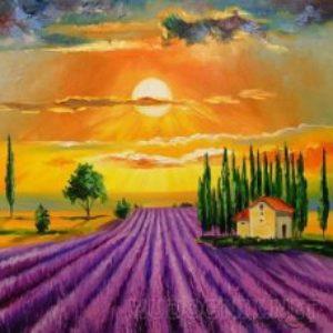 «Лавандовое поле»