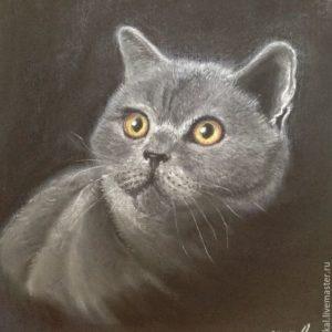 «Кот»
