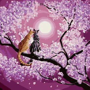 «Котейкина романтика»