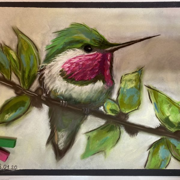 «Птичка»